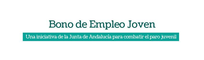 Bono de Empleo Joven. Ayudas para la contratación. | Solucione Asesoría Online - Gestoría Online laboral, fiscal image 2